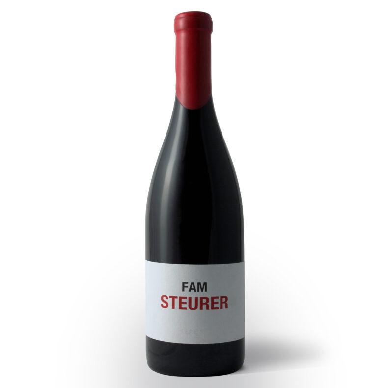 HST HANNES STEURER FAM STEURER